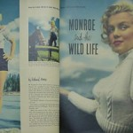 Monroe Article and Photos from Modern Screen 11/53